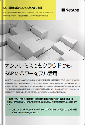 SAP環境のポテンシャルをフルに発揮